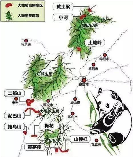 野生大熊猫区域种群状况、生活习性及地理分布图