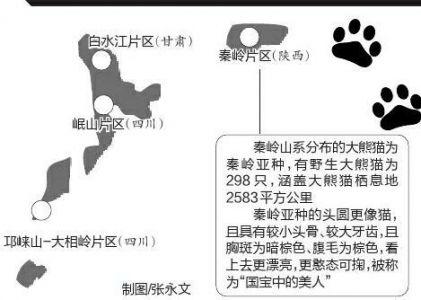 陕甘三省的大熊猫国家公园