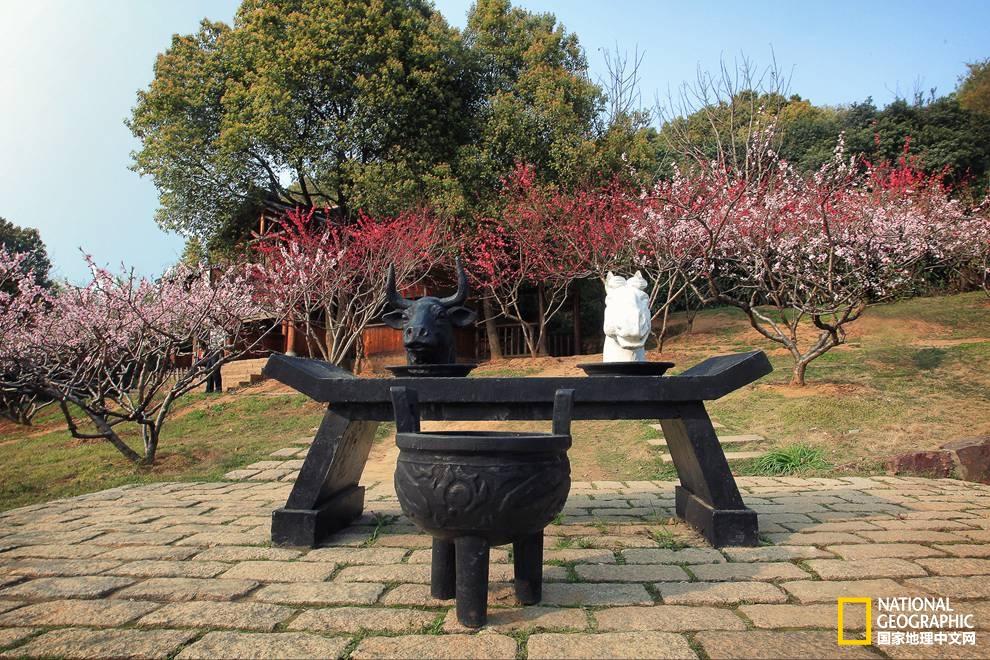 早春时节去趟无锡,满足你所有的江南情怀!