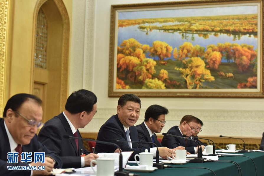 3月10日,中共中央总书记、国家主席、中央军委主席习近平参加十二届全国人大五次会议新疆代表团的审议。