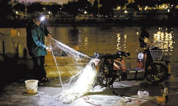 非法捕捞行为屡禁不止,尤其是在夜晚。