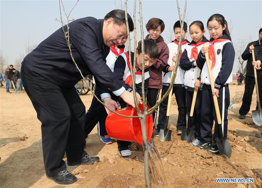 Chinese President Xi Jinping (L) waters a sapling as he attends a tree planting activity in Beijing, capital of China, March 29, 2017. China