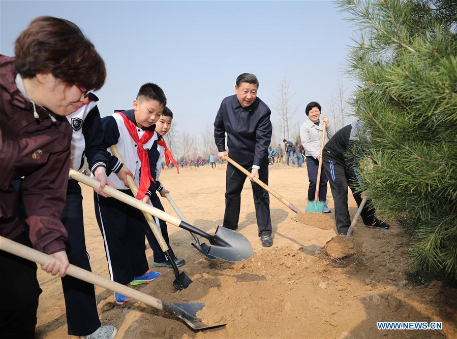 Chinese President Xi Jinping (2nd R) attends a tree planting activity in Beijing, capital of China, March 29, 2017. China