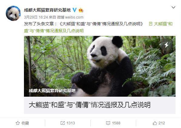 成都大熊猫繁育研究中心所发微博
