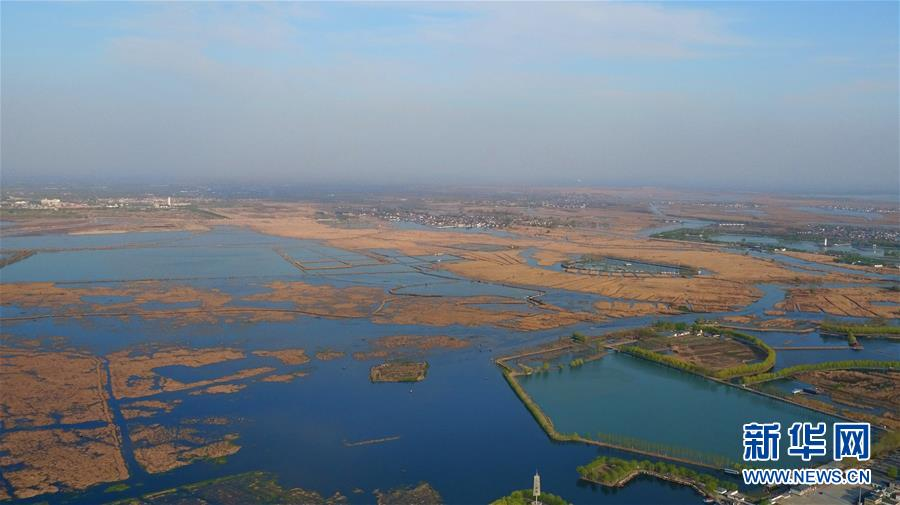 The Baiyangdian wetland is the largest freshwater lake in north China. It is also in the middle of the newly established Xiong