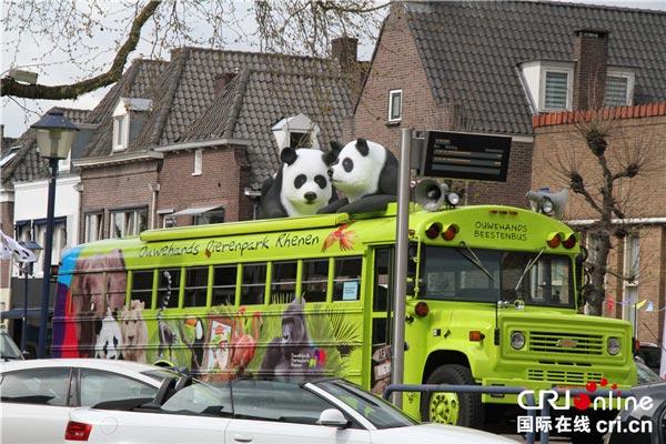 由校车改造的熊猫游览车