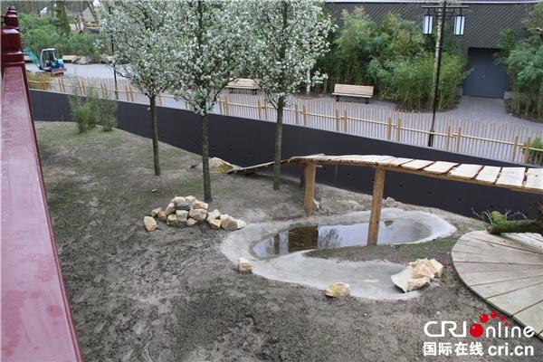 大熊猫室外活动区域