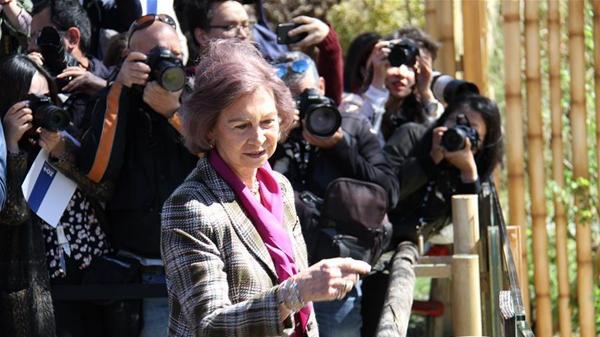 4月5日,西班牙索菲亚王后来到马德里动物园看望大熊猫