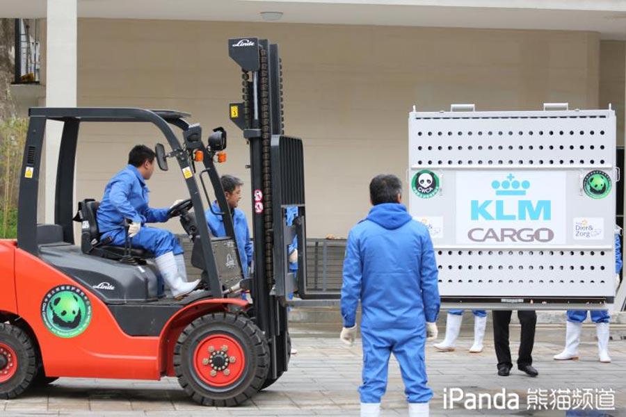"""""""武雯""""的转运箱正被转移至运输卡车"""