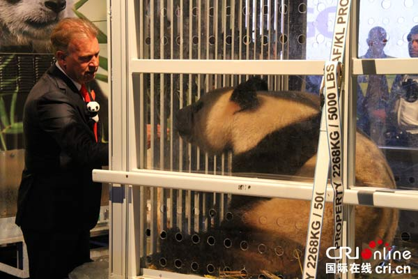 "Cute and cuddly ""panda-monium"" hit the Netherlands on Wednesday, with the arrival of the country"