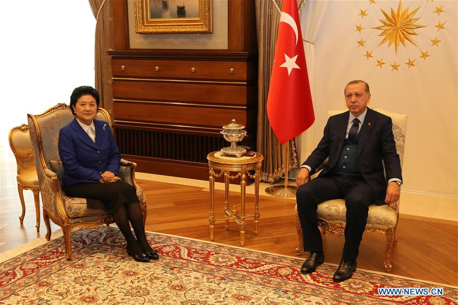 Turkish President Recep Tayyip Erdogan (R) meets with visiting Chinese Vice Premier Liu Yandong in Ankara, Turkey, on April 18, 2017. (Xinhua/Qing Yanyang)