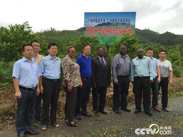 2015年7月21日,马拉维代表团参观青蒿种植基地。