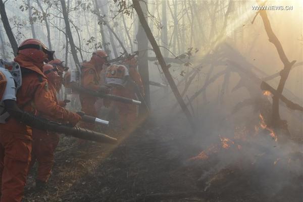 آلاف الأشخاص يكافحون حريق غابات في شمالي الصين