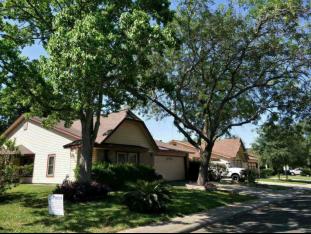 Neighborhood homes in a suburb of San Antonio, TX.  Photo/Zhou Yawei