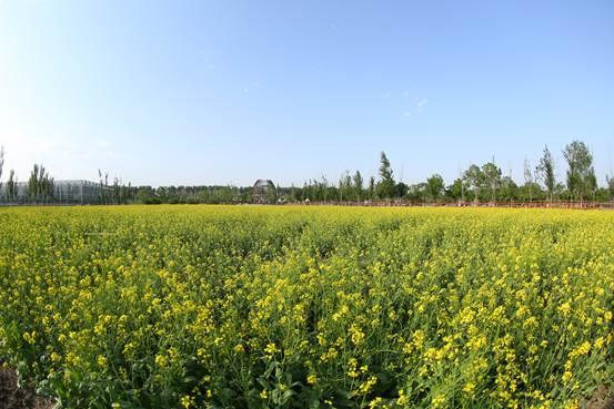 田园家庭风景gif