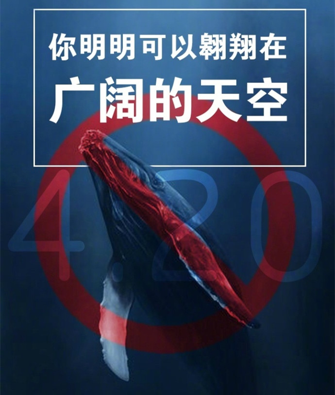 图片来自共青团中央官方微博