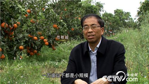 致富经:专门打造百万富翁的范老爷子(20170515)