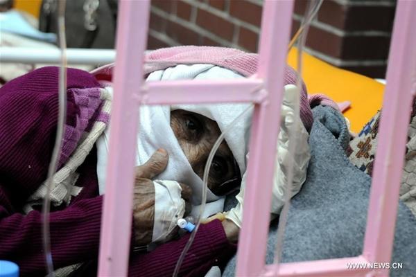 الصحة العالمية تعلن إرتفاع حالات الوفاة بالكوليرا والاسهال في اليمن الى 97
