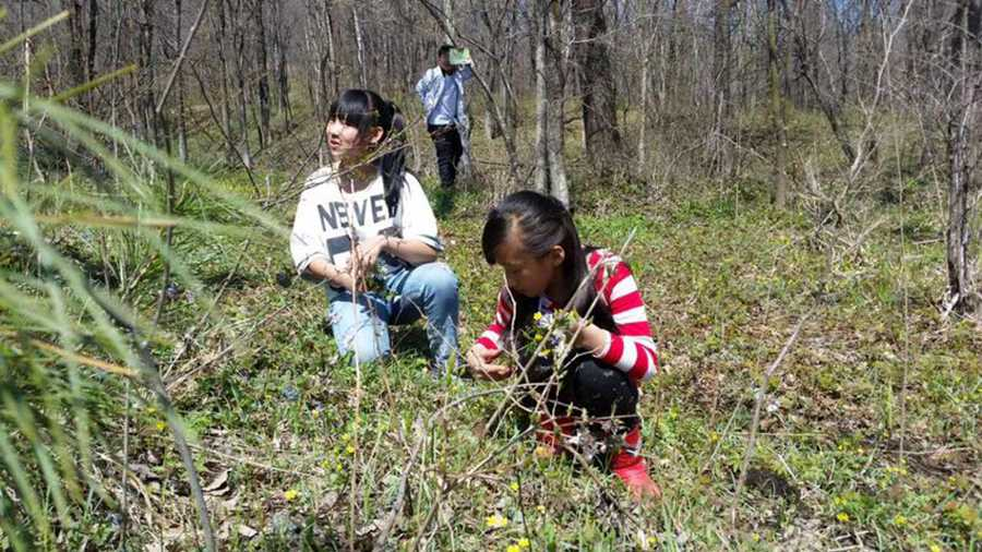 Students visit the botanical garden for free. [Photo provided to chinadaily.com.cn]