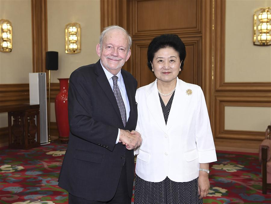 Chinese Vice Premier Liu Yandong meets with Anthony Lake, chief of United Nations Children