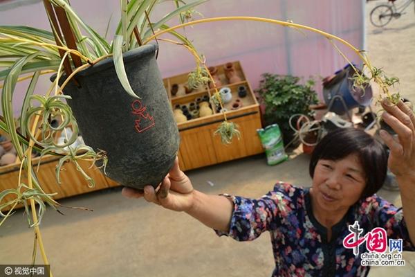 مزارعة صينية تحقق نجاحا في بيع منتجاتها الطينية خارج البلاد