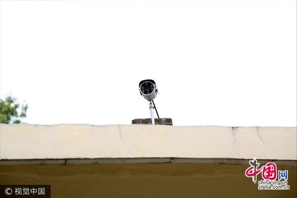 أشقاء على تواصل دائم مع والديهم بـ10 كاميرات