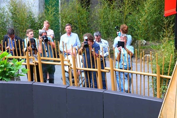 ظهور ساحر لباندتين عملاقتين في حديقة حيوان هولندية