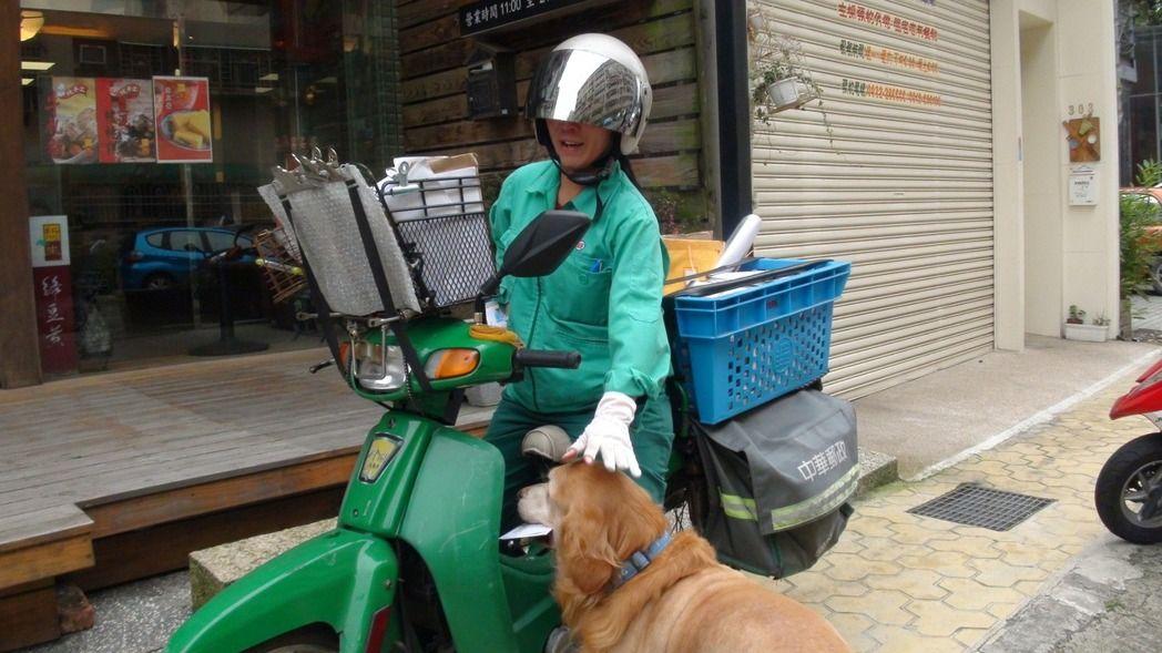 """宠物狗咬伤邮递员的事件频发,但也有亲人的宠物狗。图为岛内民众饲养的金毛""""BOSS"""",每次邮递员到家都是它去取信。"""