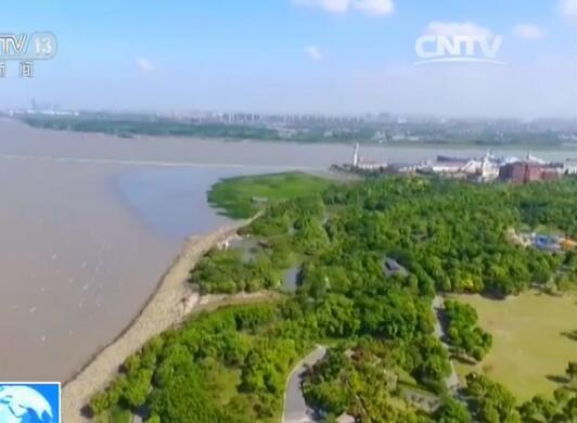 上海吴淞炮台湾国家湿地公园