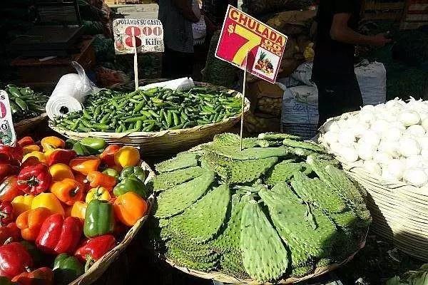 菜市场上的仙人掌