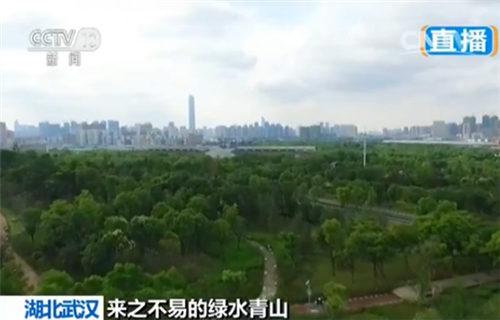 武汉城郊的园博园
