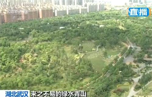 如今的绿水青山