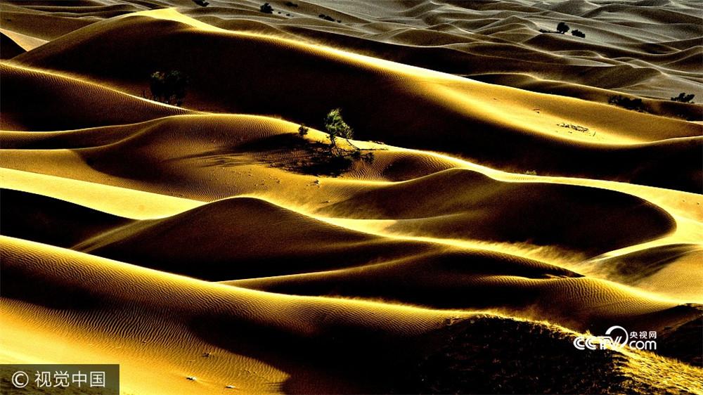 Ningxia: tourisme dans le désert en vogue