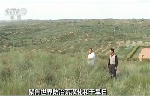 沙漠变绿洲