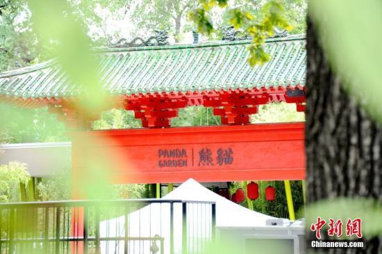 图为7月4日拍摄的开放前夕的柏林动物园大熊猫馆。中新社记者 彭大伟 摄