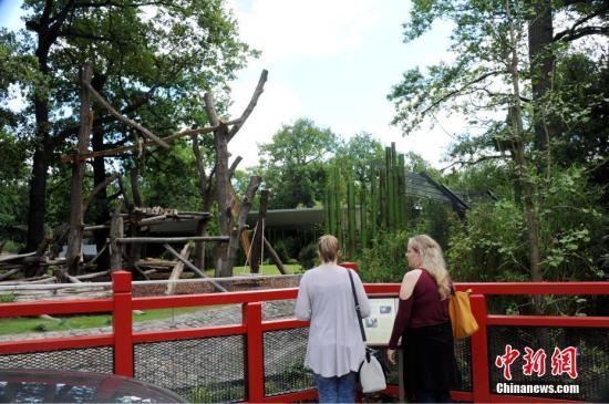 图为7月4日,两位游客在即将对公众开放的柏林动物园大熊猫馆前驻足。中新社记者 彭大伟 摄