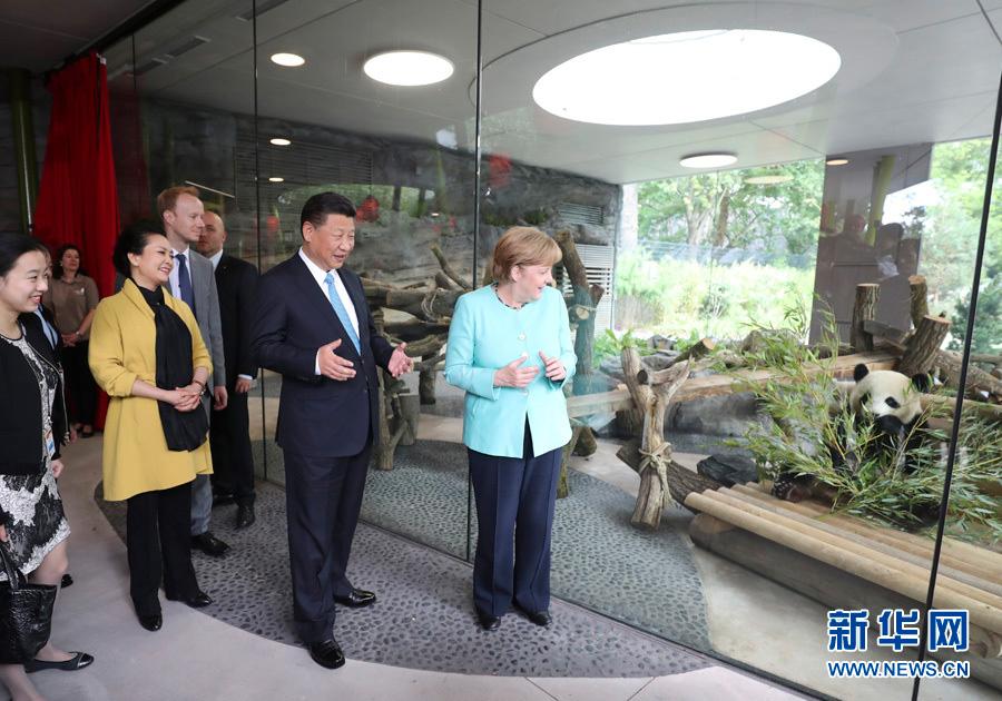 7月5日,国家主席习近平同德国总理默克尔共同出席柏林动物园大熊猫馆开馆仪式。这是习近平和夫人彭丽媛同默克尔在大熊猫馆。-新华社记者马占成-摄