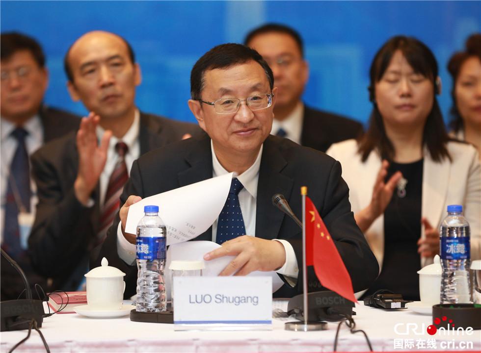 中国文化部长雒树刚