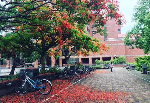"""""""台湾最美大学""""之一的中正大学一隅。(图片来源:台湾《东森新闻云》翻摄自IG)"""