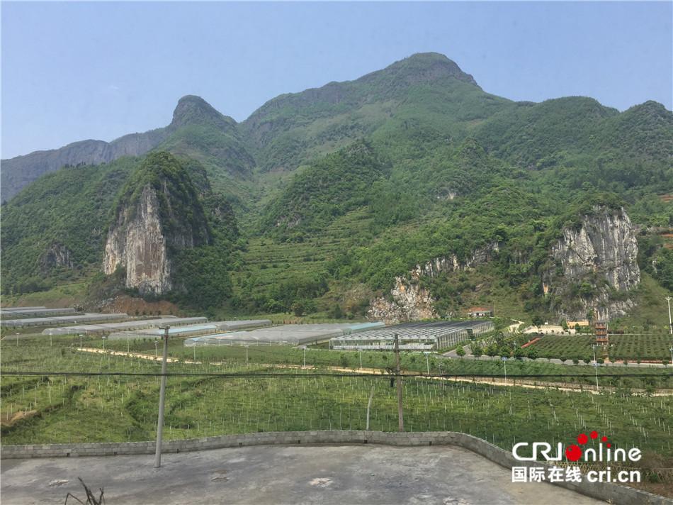 盘州娘娘山农旅结合园区 摄影:刘娜