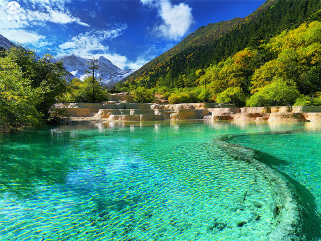 夏日黄龙(图片来自黄龙景区管理局 姜跃斌/摄)