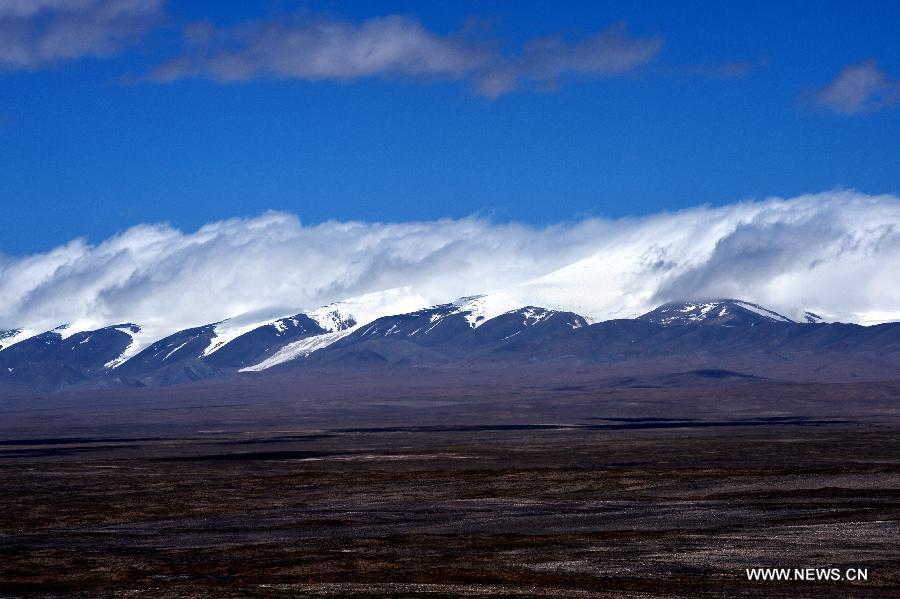 Protéger les belles montagnes bleues du Hoh Xil