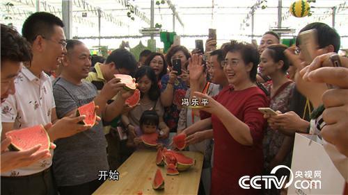 [vinbet浩博首页]冯乐平:种西瓜高手年卖8000万,价格还比别人贵