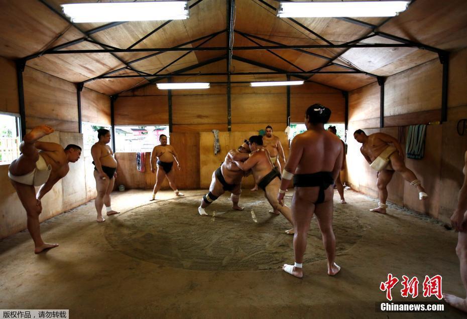 Découvrez le fascinant quotidien des sumos: 8000 calories par jour et siestes avec masque à oxygène