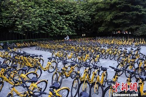 资料图 广州花城广场一单车停放点停满了共享单车。中新社记者 陈骥旻 摄