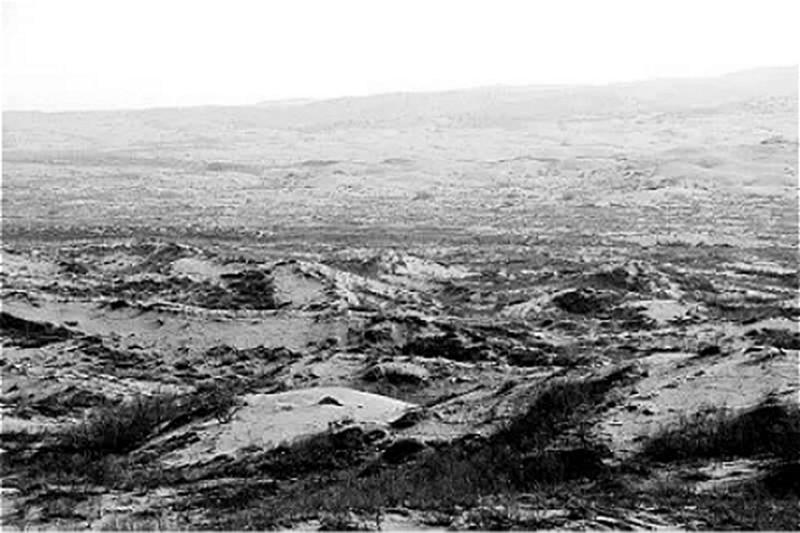 塞罕坝建场前的荒原(资料图片)