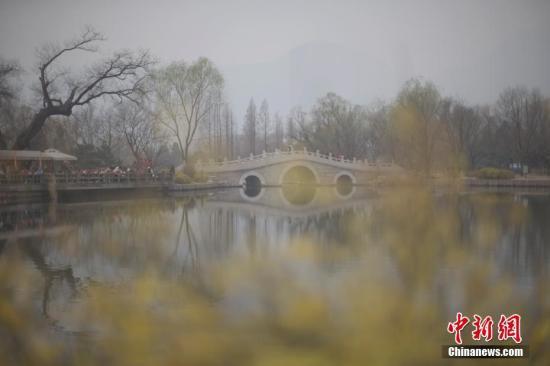 3月22日,北京遭遇雾霾天,空气质量达中度污染。图为市民在北京植物园赏春花。 中新社记者 刘关关 摄