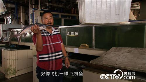 [久久热]梁森光:娶个好强的媳妇后养鸭嘴鱼致富