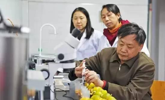 """湖北省职工发来的""""杨承清劳模创新工作室""""工作瞬间"""