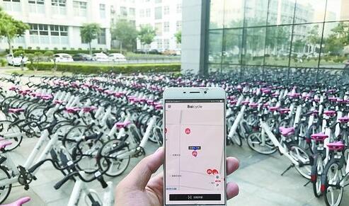 ▲ 在同安区湖里园42号,眼前有400多辆,共享单车 App却只显示一辆